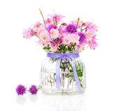 Водосбор обыкновенный цветок, также называется бабушки капота или Колумб — Стоковое фото