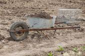 The self-made cart  — Stockfoto