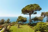 海と庭園の眺め — ストック写真