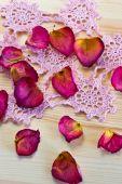 Beautiful dried rose petals — Stock Photo