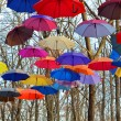 Постер, плакат: Many Bright umbrellas Bright Vivid Colors Freedom concept