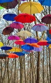 Many Bright umbrellas. Bright, Vivid Colors. Freedom concept — Stock Photo