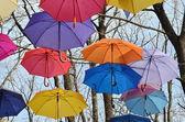 Many umbrellas hang on trees. Freedom. — ストック写真