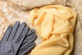 Sheepskin Fur, Gloves and Scarf — Stock Photo