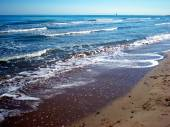 Shores of the Adriatic Sea — Stock Photo
