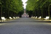 Public Hofgarten park in Düsseldorf — Stock Photo
