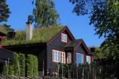 Norwegian wood house — Stock Photo