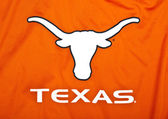 Texas longhorns — Stock Photo