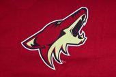 Phoenix arizona coyotes — Stock Photo