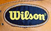 Wilson — Stock Photo