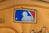 Major legue baseball — Stock Photo