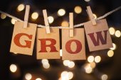 Grow Concept Clipped Cards and Lights — Stock Photo