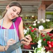 Florist woman using the phone with a clipbard in her store — Stock Photo #79003018
