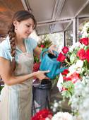 Florist woman watering the plants and flowers in her store — Stock Photo