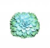 Beautiful green soap carving flower on white — Stock Photo