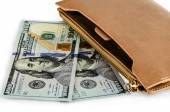 New Dollars and purse — Stock Photo
