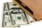 Dollars and purse — Stock Photo