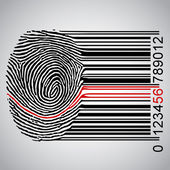 Fingerprint connected to a bar code — Stock Vector