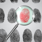 Fingerprints — Stock Vector