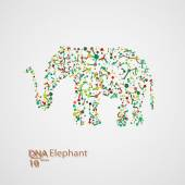 Molecular structure in the form of elephant — Stock Vector