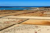 Salinas del Janubio, ostrov Lanzarote, Kanárské ostrovy, Španělsko — Stock fotografie