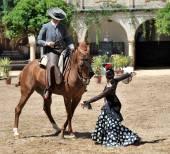 Equestrian show, Cordoba, Spain — Stock Photo