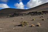 Volcanic mountains at Lanzarote Island, Canary Islands, Spain — Stock Photo