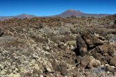 Volcanic landscape at Lanzarote Island, Canary Islands, Spain — Stock Photo