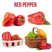 Pepper isolated — Stock Photo
