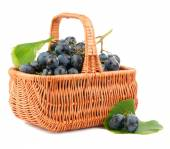 Grapes in a basket — Stock Photo