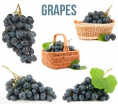 Grapes isolated — Stock Photo