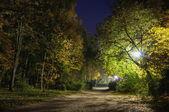 Parque de noche — Foto de Stock