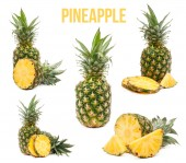 Set of five compositions pineapple isolated — ストック写真