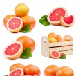 Set of six compositions grapefruits isolated — Stock Photo #57758963