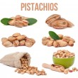 Set of six compositions pistachios isolated — Stock Photo #58291923