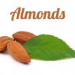 Handful of almonds with leaf isolated — Stock Photo #58291951