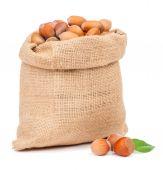 Hazelnuts in bag isolated — Stockfoto