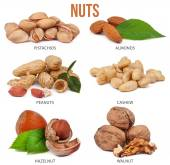 Set of six compositions nuts isolated — Stock Photo