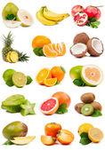 Large set of fruit isolated — Photo