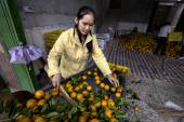 Chinese Girl citrus being washed sorted and graded after harvest — Stock Photo