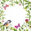 Border frame with summer herbs, meadow flowers, bird and butterflies. Watercolor — Stock Photo #54953091