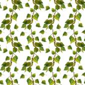 Repeated backdrop with birch branches and fresh green leaves — Stock Photo