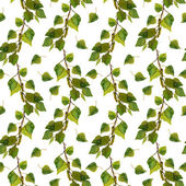 Repeated backdrop with birch branches and fresh green leaves — Photo