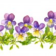 Seamless floral border band with violet viola flowers on white background — Stock Photo #58109851