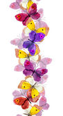 Seamless repeated border line with bright colorful butterflies - watercolor hand painted design — Stock Photo