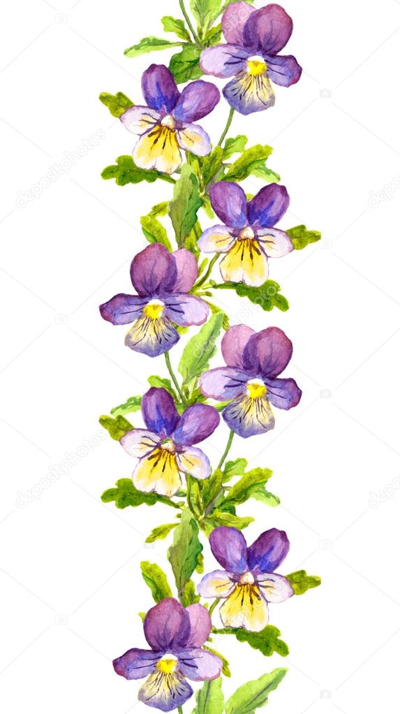 ... with botanical painted violet viola flowers — Stock Image #58109853