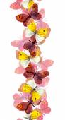 Seamless edging fringe with bright colorful butterflies - red, yellow, pink - isolated on white background — Stock Photo