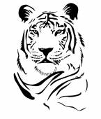 Tiger Vector Art — Stock Vector