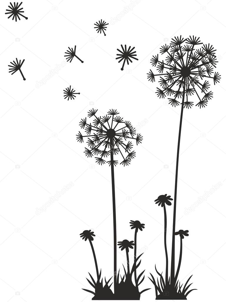 Dandelion Vector Graphics Stock Vector 169 View360adv