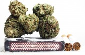 Marijuana — Photo